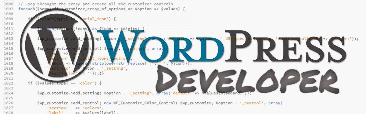 San Francisco Oakland Berkeley Bay Area WordPress Website Developer Designer