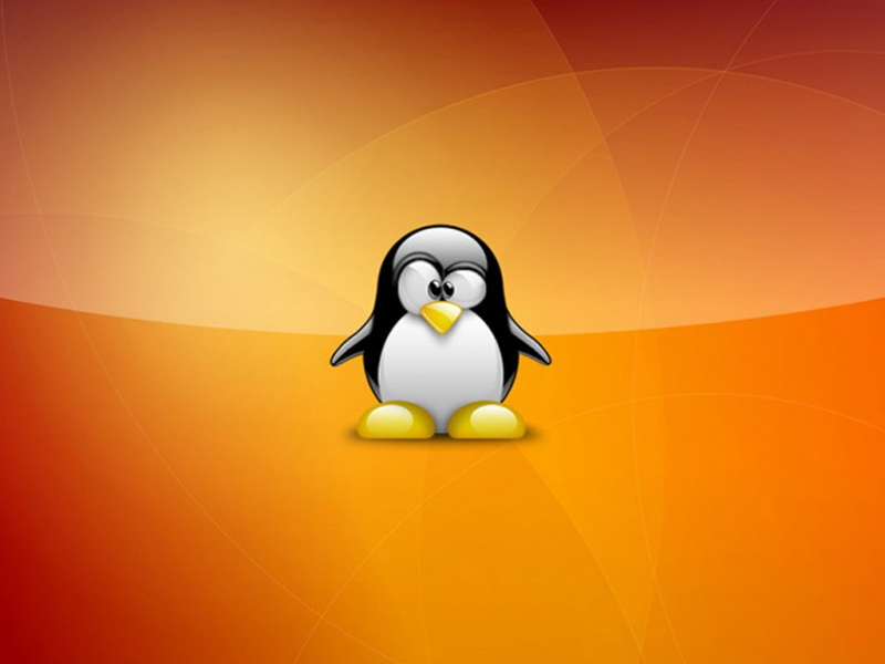super_tux_wallpaper_linux-800x600