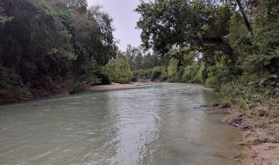 san-marcos-river-texas-north-of-luling